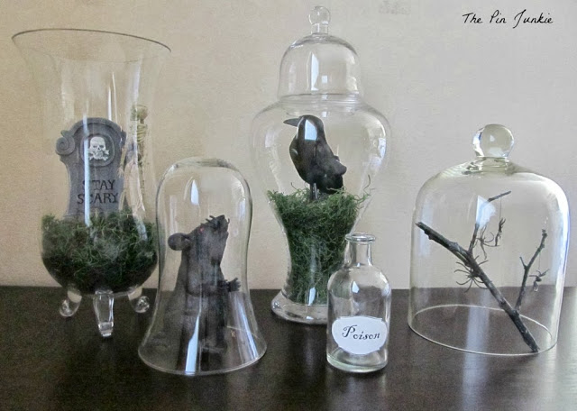 jars of oddities