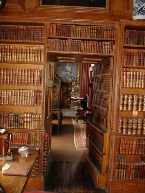 the bookcase2