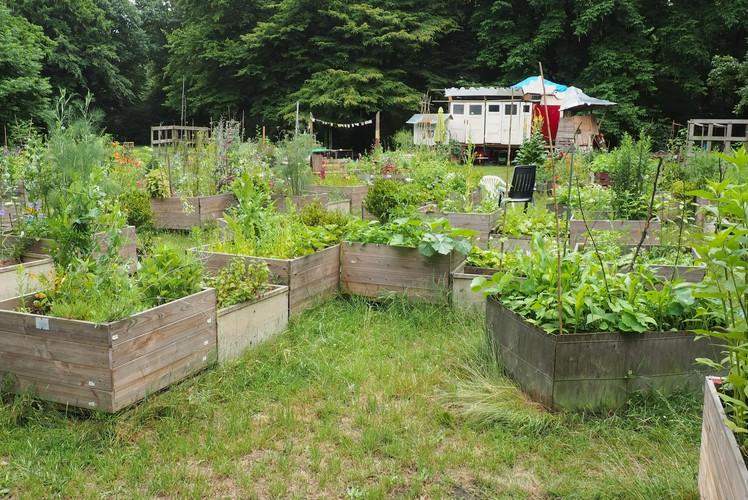 Urban Garden Pallet Bed