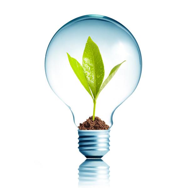 Environmentally Conscious