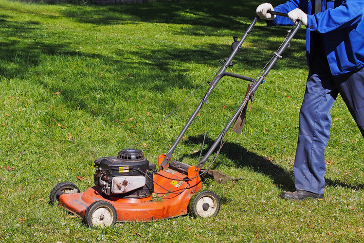 Sharpen lawn Mower and Cut
