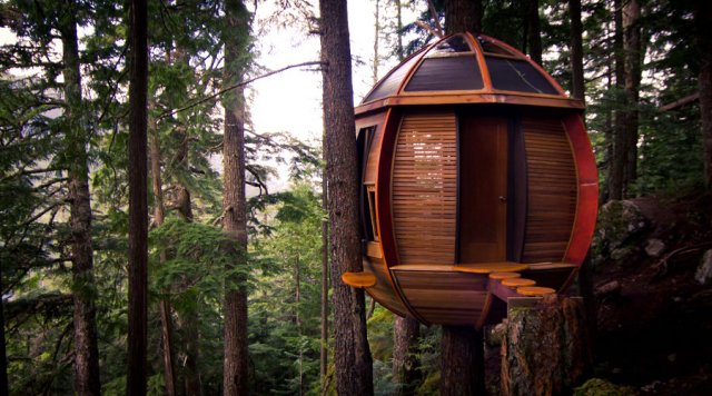 #3 Hemloft Tree House