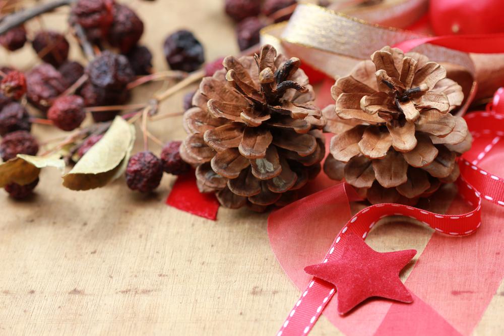 #9 Pretty Pinecones