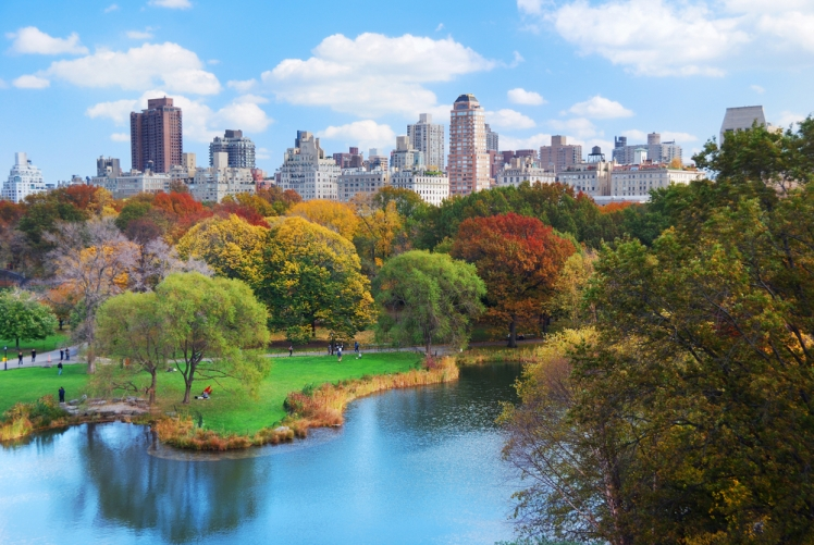 10 Unique Experiences to Have in Central Park