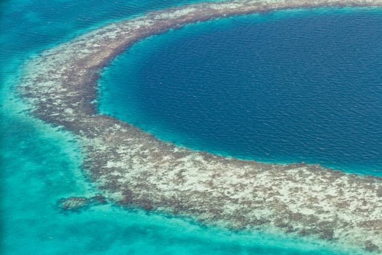 belize barrier reef reserve system Belize barrier reef reserve system is the largest barrier reef in the northern hemisphere, as a serial nomination consisting of seven sites the reef illustrates a.