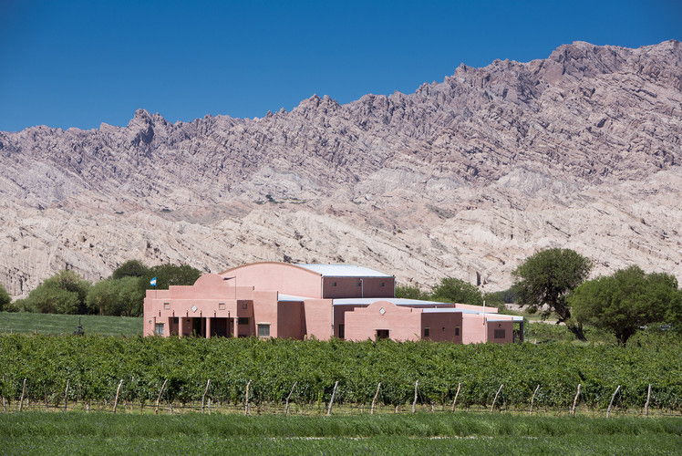 Argentinian wineries
