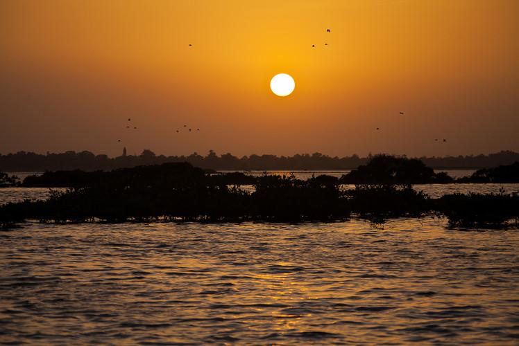 Saloum Delta, Senegal