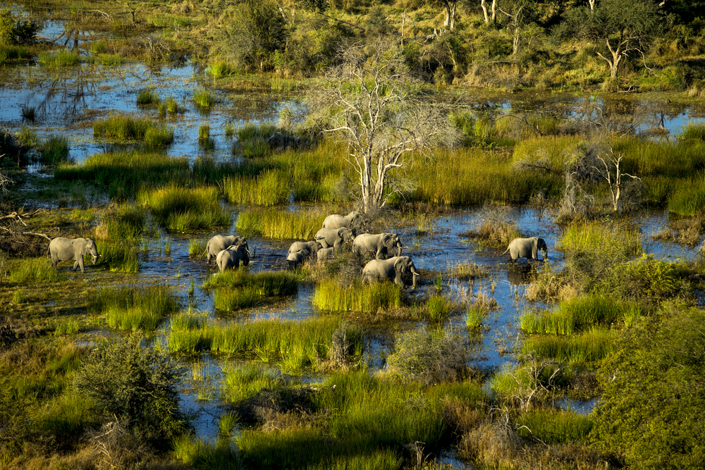 Explore Africa's beauty for 17 days