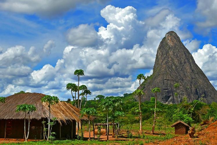 Go on a safari in Mozambique
