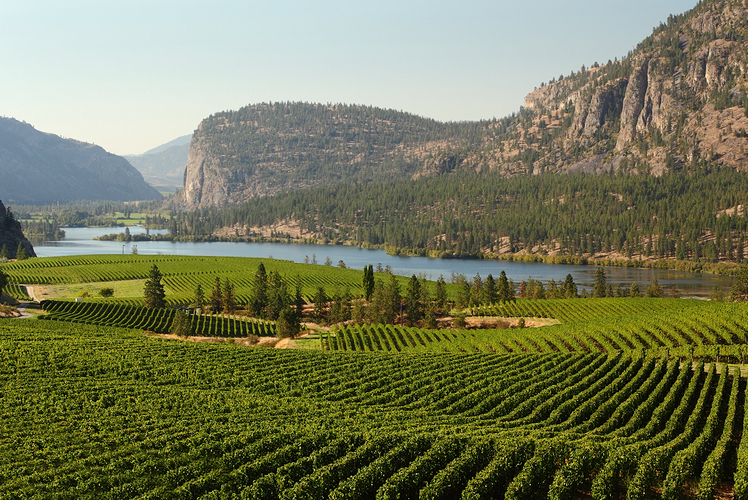 Okanagan Valley, British Columbia Canada