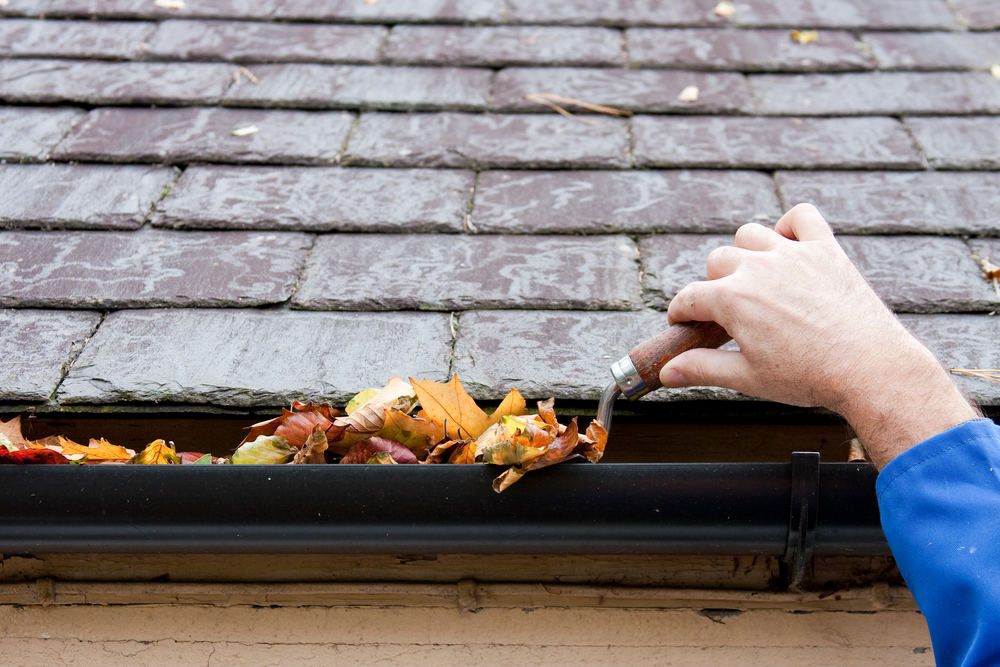 8 Ways To Improve Your Curb Appeal In The Fall Reliable